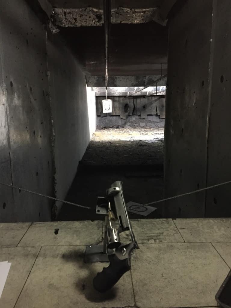 Fun with Guns?